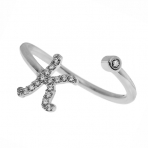 Ring silver 925 rhodium plated with zirconia - Wish Luck