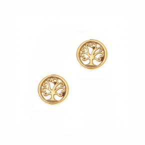 Earrings in silver 925 gold plated